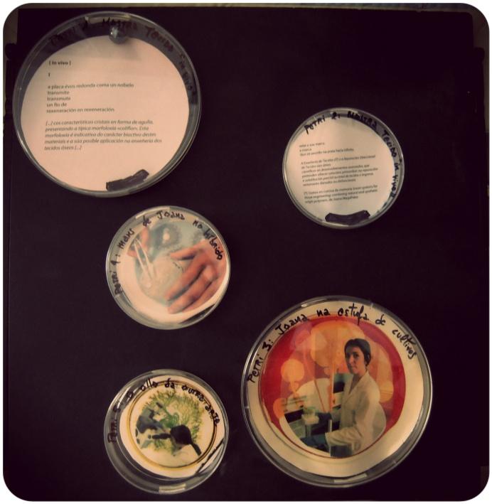 Placas Petri con fotografías e fragmentos do poema [in vivo]